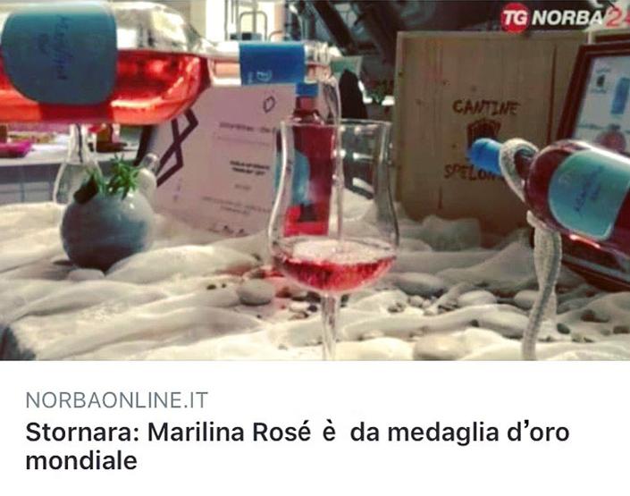 Articolo Marilina Rosè è da medaglia d'oro mondiale su Norbaonline.it