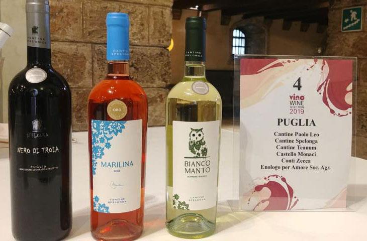 Cantine Spelonga al Vinoway Wine Selection 2019