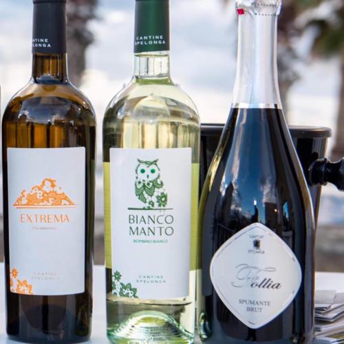 cantine-spelonga-vini-follia-biancomanto-extrema2
