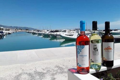 cantine-spelonga-vini-marilina-rose-biancomanto-extrema